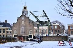 DSC_7813 (seustace2003) Tags: rotterdam nederland holland pays bas paesi bassi an ísitír delfshaven