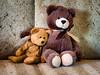 Needing a Hug (HTBT) (13skies) Tags: hugs comfort understanding friends love loving trust teddybeartuesday caring believing sony couch happyteddybeartuesday comforting rely needing htbt teddybears