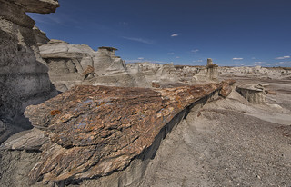 Giant Petrified Logs of the Bisti Wilderness