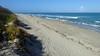 20180212_31 Carlin Park Jupiter Florida USA (FRABJOUS DAZE - PHOTO BLOG) Tags: carlinpark jupiter palmbeachcounty pbc fl fla florida usa yhdysvallat sunshinestate beach park ranta hiekkaranta