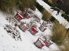 Melton in Bloom Buckets in the snow Melton Mowbray Leicestershire 1st March 2018 (@oakhamuk) Tags: meltonmowbray leicestershire 1stmarch2018 snow winter