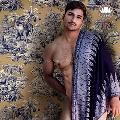 Aarav (designldg) Tags: india indiasong uttarpradesh varanasi benares redhalo fashion shawl man male malemodel malephotography menswear womenswear accessory embroidery ©laurentgoldstein designer design style mughalstyle infinestyle culture colour fabric blue trend fashionblogger fashionphotography composition photography homewear decoration deco interiors homedecor hometime