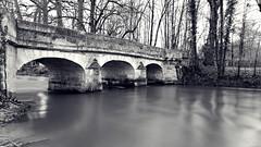 L'autre côté du pont (Un jour en France) Tags: monochrome pont eau arbre viaduc arche ciel rivière