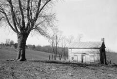 Empty House, Bourbon county KY (Nickademus42 (Thank you for 1 million views)) Tags: film photography podcast project 35mm black white kodak double x xx 5222 nikonos ii