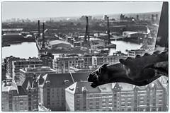Dragon over Hamburg (michael_hamburg69) Tags: hamburg germany deutschland view overview aussucht viewpoint observationdeck hopfenmarkt stnikolai 76meter aussichtsplattform stnicholaschurch gargoyle wasserspeier