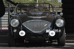 Austin Healey 100 (jfhweb) Tags: jeffweb sportauto sportcar racecar voituredecollection voiturehistorique vehiculehistorique voituredecourse courseautomobile circuitpaulricard circuitducastellet lecastellet httt austinhealey 100