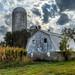 white barn sky drama