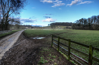 Gated country road in Cottesbrooke Park in Northants