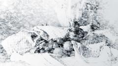 still life 1-4 (Poli Maurizio) Tags: sony sonydsch200 disegno art abstract painting sculpture museum gallery virtual artist master famous canvas painter collection drawing impressionism naturalism renaissance expressionism naive realism baroque song sketch garden portrait autumn flower light nature sky smoke spring summer indoor travel water woman yellow blue black white color movement figure macro photo object wood fine unlimited still life fantasy fantastic outdoor clouds man barocco illustrazione schizzo watercolor technique surrealism 3dweddingpartyfamilytravelfriendsjapanvacationlondonbeachcaliforniabirthdaytripnycsummernatureitalyfrancemeparisartflowerssanfranciscoeuropechinaflowernewyorkwaterpeoplemusiccameraphone 3daustraliachristmasusaskygermanynewcanadanightcatholidayparkbwdogfoodsnowbabysunsetcitychicagospaintaiwanjulybluetokyoenglandmexicowinterportraitgreenred 3dpolimaurizioartworkredfunindiaarchitecturegardenmacrospringthailandukseattlefestivalconcertcanonhouseberlinhawaiistreetlakezoofloridajunemaywhitevancouverkidstreecloudstorontobarcelonageotaggedhome 3dbwbwdigitalseadaytexasscotlandcarlighthalloweencampingchurchanimalstreeswashingtonrivernikonaprilbostongirlirelandgraffitiamsterdamrocklandscapeblackandwhitecatsnewyorkcitysanromeroadtripurbanhoneymoonocean 3dwatercolorsnewzealandmarchblackmuseumyorkhikingislandmountainsyellowsydneysunhongkongshowgraduationcolorfilmmountainanimallosangelesschoolmoblogphotodogs 3dartdesigndisegnosiciliacalabriabasilicatacampaniamarcheabruzzomoliselaziotoscanaemiliaromagnalombardiavenetofriuliveneziagiuliapiemontevalledaostaliguriatrentinoaltoadigepuglia 3dlandscapepaesaggiolunasolemarenuvolecittàtramontoalbamontagnecollinenebbialuceautomobilearredamentointerniesterninaturamortacieloragazzadonnauomobambinofruttabarca 3dcanigattirinascimentomodelbarocconaturalismomattepaintingfuturismoastrattismocubismosurrealismorealismoiperealismoclassicismorococomanierismoromanticismoimpressionismogiocovirtualepescefishlightnightday