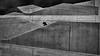 man in the concrete (heinzkren) Tags: panasonic lumix schwarzweis blackandwhite bw sw urban candid man concrete beton stairs treppe stiege architektur architecture linien lines street streetphotography geometry monochrome
