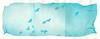 polaroid1688 (www.cjo.info) Tags: 600 600cyan bw edinburgh europe europeanunion instantlab londonroad newtown polaroid polaroidemulsionliftprint polaroidemulsionlifttriptych polaroidintegralemulsionliftprint scotland theimpossibleproject unitedkingdom westerneurope analogue animal bird blackwhite blackandwhite citycenter cloud fauna film flight integral monochrome pidgeon sky triangle wing