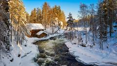 Old Watermill in river Kitkajoki (M.T.L Photography) Tags: myllykoski rapids water sky trees ice winter wood snow kuusamo juuma mtlphotography mikkoleinonencom winterwonderland finland lapland oldwatermillinriverkitkajoki panoramicphotography