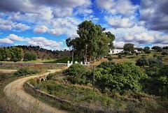 Via de la Plata: A Countryside Walk