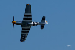 180822_26_ACAS_BaldEagle (AgentADQ) Tags: atlantic city new jersey 2018 air show airshow flying airplane north american p51d mustang baldeagle