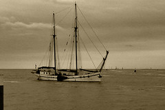 bygone times ... (1170242) (Le Photiste) Tags: clay bygonetimes oldtwomastersailingboatonthewaddenzeenearharlingenfryslânthenetherlands twomastersailingboat waddenzeenearharlingenfryslânthenetherlands ancienttwomastersailingboat postcard oldpostcard bw simplybw water waterscape sailingboat panasonic panasonicdmcfx30 oddvehicle oddtransport rarevehicle twomaster harlingenfryslân thenetherlands nederland afeastformyeyes aphotographersview autofocus artisticimpressions alltypesoftransport anticando blinkagain beautifulcapture bestpeople'schoice creativeimpuls cazadoresdeimágenes digifotopro damncoolphotographers digitalcreations django'smaster friendsforever finegold fairplay greatphotographers groupecharlie peacetookovermyheart hairygitselite ineffable infinitexposure iqimagequality interesting inmyeyes livingwithmultiplesclerosisms lovelyflickr myfriendspictures mastersofcreativephotography niceasitgets photographers prophoto photographicworld planetearthbackintheday planetearthtransport photomix soe simplysuperb showcaseimages simplythebest thebestshot themachines transportofallkinds theredgroup thelooklevel1red vividstriking wow yellowlevelno2 simplybecause oldtimership ship
