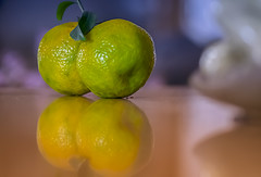 Mandarins Reflection (pasquale di marzo) Tags: interno frutta mandarini riflesso colore macro 2018