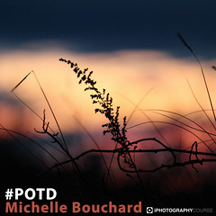 Michelle Bouchard #POTD (iPhotographyCourse) Tags: sunset sunrise field wheat oats sun warm yellow blue red silhouette photographytutorial photographer photography photoshop photomanipulation photo photographygame potd photographycompetition photographyblog photographyclass photographytips photocourse photographyportrait photographyarticle photographyguide photographylesson camera cameradial cameradialmode cameras camerasetting camerawedding weeklychallenge composition competition elearning learn learnphotography learnfromhome distancelearning exposure