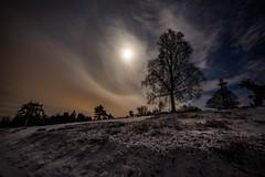 Halo um den Mond (clemensgilles) Tags: longexposure nachtfotografie moonlight moonglow halo beautiful deutschland eifel germany