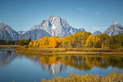 Fall Colors Reflected (Brad Prudhon) Tags: 2018 grandtetonnationalpark jacksonhole september wyoming fallcolors reflection water
