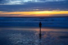 Standing alone (afagen) Tags: california pacificgrove asilomarstatebeach montereypeninsula asilomar beach pacificocean ocean sunset dusk favorite