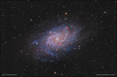 M33 - The Triangulum Galaxy (francesco.battistella) Tags: astrophotography astronomy astroatlas space qhyccd optolong qhy168c filters lpro ha m33 triangulum galaxy cmos deep sky image telescope universe astrometrydotnet:id=nova3119764 astrometrydotnet:status=solved