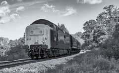 20171006-IMG_6286-Edit (deltic21) Tags: deltic deltics 55 class napier type 5 english electric coco clag british rail railway railways train trains tracks bluebell preserved presevation gala diesel loco locmotive engine traction power thrash br blue green two tone monochrome bw canon sussex lineside trees station foxfield horsted keynes east grinstead sheffield park classic heritage scenery scenic countryside retro vulcan foundry track 55009 55002 55019 alycidon royal highland fusiliers kings own yorkshire light infantry mono