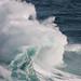 Northwest Swell (Jan.12)