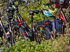 Lonely bikes... (diarnst) Tags: fahrräder elektrofahrräder fahrradhelm grünpflanzen bikes electricbicycles greenplant