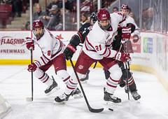 UMass Hockey vs. Northeastern 1-51 (dailycollegian) Tags: umass hockey ice college sports mullins center minutemen northeastern win east mitchell chaffee bobby trivigno carolineoconnor
