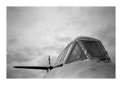 FILM - Bullet holes? (fishyfish_arcade) Tags: airplane analogphotography bw blackwhite blackandwhite filmphotography filmisnotdead fomapan fomapan400 istillshootfilm monochrome newarkairmuseum nikkor2880f3556afd nikonf80 aeroplane aircraft analogcamera film mono
