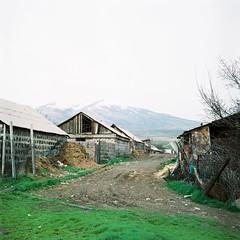 Armenia_004 (newmandrew_online) Tags: armenia 6x6 mamiya fuji color mamiyac220 landscape outdoor