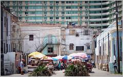 A Habana Market Scene (kurtwolf303) Tags: havanna habana cuba kuba market markt buildings gebäude persons personen omd olympusem5 microfourthirds city stadt streetphotography people windows fenster urban urbanlifeinmetropolis kurtwolf303 250v10f