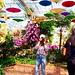 Rachapruek Gardens, Chiang Mai.