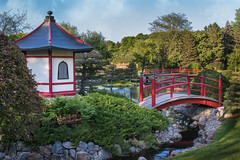 Japanese Garden #2 - Pagoda and Red Bridge (Patti Deters) Tags: japanese garden pagoda building bridge red water stream wood wooden painted calm peaceful island trees stones architecture park river creek scenic outdoors landscape japanesegarden normandalecommunitycollege minnesota pattideters arch railing shoreline 2