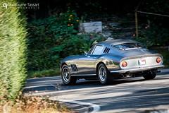 Ferrari 275 GTB (Guillaume Tassart) Tags: motorsport automotive classic historic legend rally rallye televie belgique belgium ferrari 275 gtb