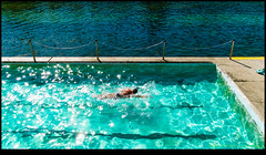 180507-8127-XM1.JPG (hopeless128) Tags: 2018 clovelly pool sydney swimmer australia newsouthwales au