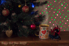 Happy New Year and Merry Christmas! (Annabelle Danchee) Tags: art artist creative day live new love beautiful danchee annabelle woman portrait people dancheeannabelle annabelledanchee selfportrait canon photo photography photos photomontage fun magic mirrorless little littleannabelle adventure bokeh