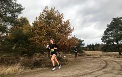 haarlerbergloop 10 km (60)