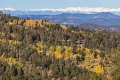 En Route To Cripple Creek, Colorado, USA (Geraldine Curtis) Tags: molliekathleengoldmine cripplecreek colorado usa opencastgoldmine tourguide hardhat mountains fallcolours dumptruck