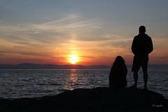 Il sole stava per abbandonare la perla dell'oceano per altri mari, altre terre. (Joseph Conrad) (hmeyvalian) Tags: matane coucherdesoleil fleuvesaintlaurent québeccanada canoneos7dmarkii tamron efm18150mm f3563isstm f11 1125s iso100 39mm