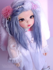 Fairyland LittleFée Ante (Rukiya Shalidora) Tags: ltf ante fairyland bjd alpaga wig alpaca ns littlefee littlefée