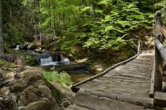 "Rodopi Smolian Canyon of Waterfalls _DSC0930 (Me now0) Tags: nikond5300 europe creek ""nikonflickraward"""