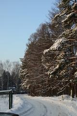 Winter (akk_rus) Tags: winter snow зима снег season 3570 28 nikkor nikkor357028 nikon d800 nikond800 russia россия moscowregion подмосковье europe европа