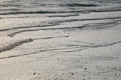 beach (hansekiki) Tags: helgoland nordsee düne strand beach canon 5dmarkiii