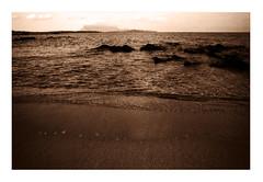 Fomapan 100 (Claudio Taras) Tags: claudio contrasto controluce canona1 taras shadow sardegna sepia spiaggia rodinal roccie onde baia filmisnotdead foma fomapan 100 grain