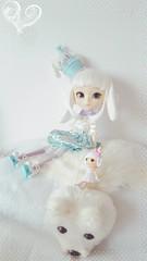 Joyeux noël ❄ (LeRaminagrobis) Tags: pullip pullips pullipphotographie dolls doll dollphotographie
