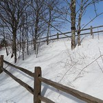 4154ex  path at Newfound Gap, Smokies thumbnail