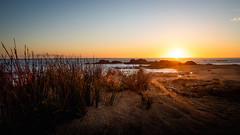 Riverton sunset (802701) Tags: 2018 201812 43 aotearoa december december2018 em1 em1markii em1mkii mft micro43 nz newzealand newzealandsouthisland omd omdem1 oceania olympus olympusomdem1 olympusomdem1mkii riverton southisland southland beach beaches fourthirds island microfourthirds mirrorless naturalworld nature outdoors photography sand sea settingsun sun sunset travel travelling