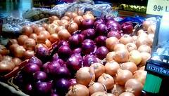 Onions! (Maenette1) Tags: onions colors produce jacksfreshmarket menominee uppermichigan flicker365 allthingsmichigan absolutemichigan projectmichigan
