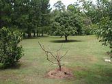 21 Highview Crescent, Modanville NSW